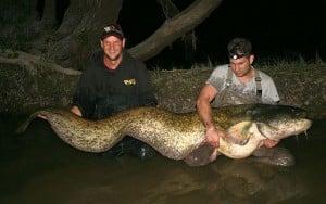 IMG_9496 Big Fish  640